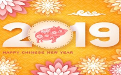 Happy Lunar New Year 2019